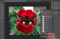 Membuat Animasi Kupu kupu dengan Adobe Photoshop CS6 thumbnail